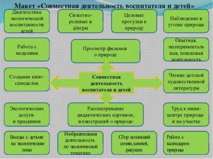 Макет «Совместная деятельность воспитателя и детей» Диагностика экологической