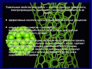 Уникальные свойства нанотрубок — высокая удельная поверхность, электропроводн