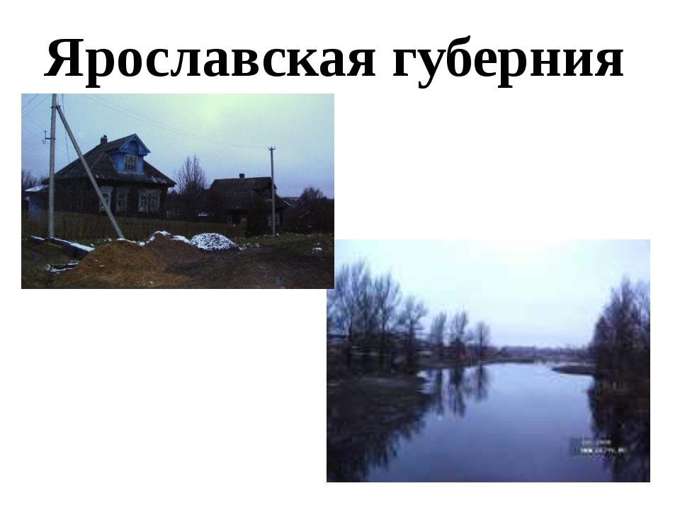 Ярославская губерния
