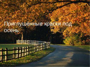 Приглушённые краски под осень