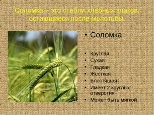 Соломка – это стебли хлебных злаков, остающиеся после молотьбы. . Соломка Кру