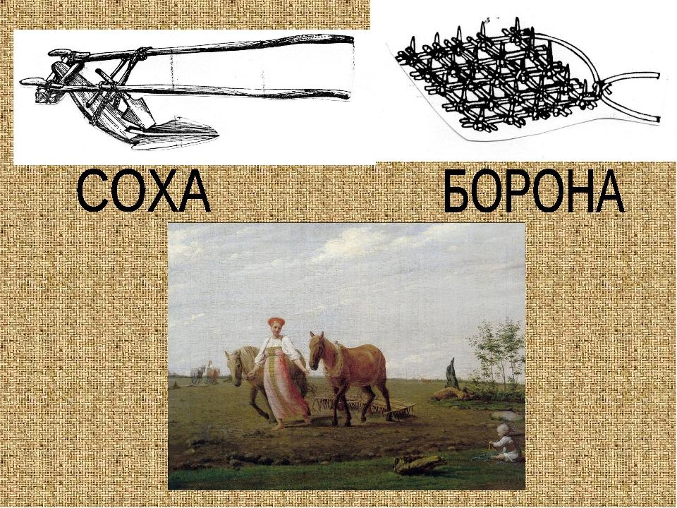 Соха и борона в картинках