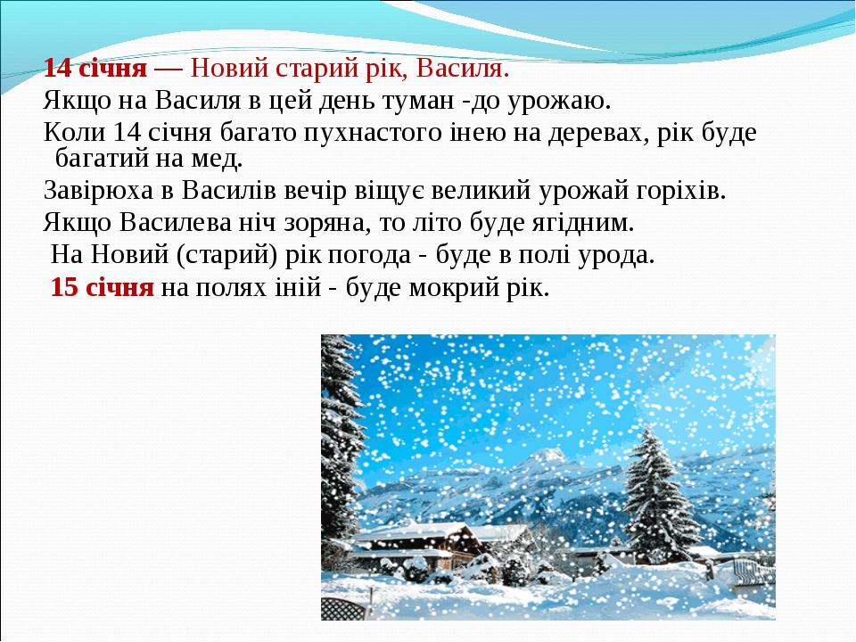 14 січня — Новий старий рік, Василя. Якщо на Василя в цей день туман -до уро...
