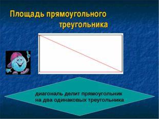 Площадь прямоугольного треугольника диагональ делит прямоугольник на два один