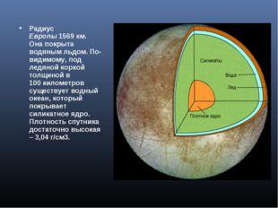 Радиус Европы1569км. Она покрыта водяным льдом. По-видимому, под ледяной ко