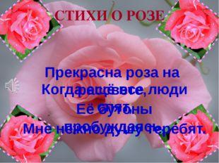 Прекрасна роза на рассвете, Когда ещё все люди спят, Её бутоны пробуждаясь, М