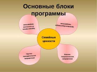 Основные блоки программы Художественно-эстетическое направление Военно-патрио