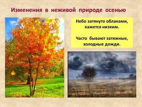 hello_html_54fd917f.jpg