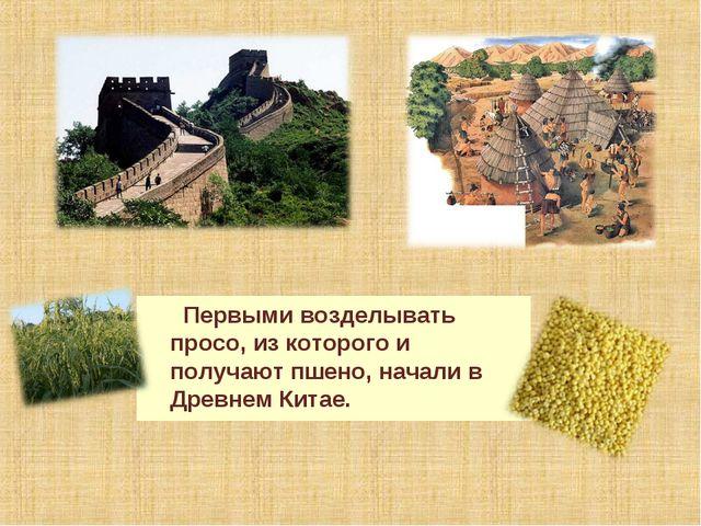 Первыми возделывать просо, из которого и получают пшено, начали в Древнем Ки...