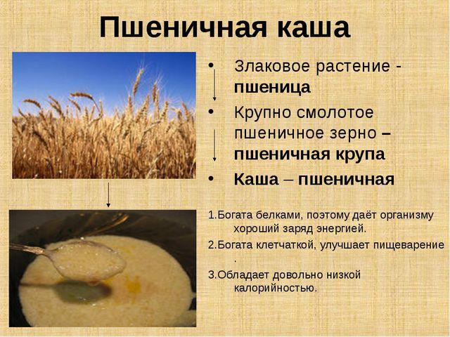 Пшеничная каша Злаковое растение - пшеница Крупно смолотое пшеничное зерно –...