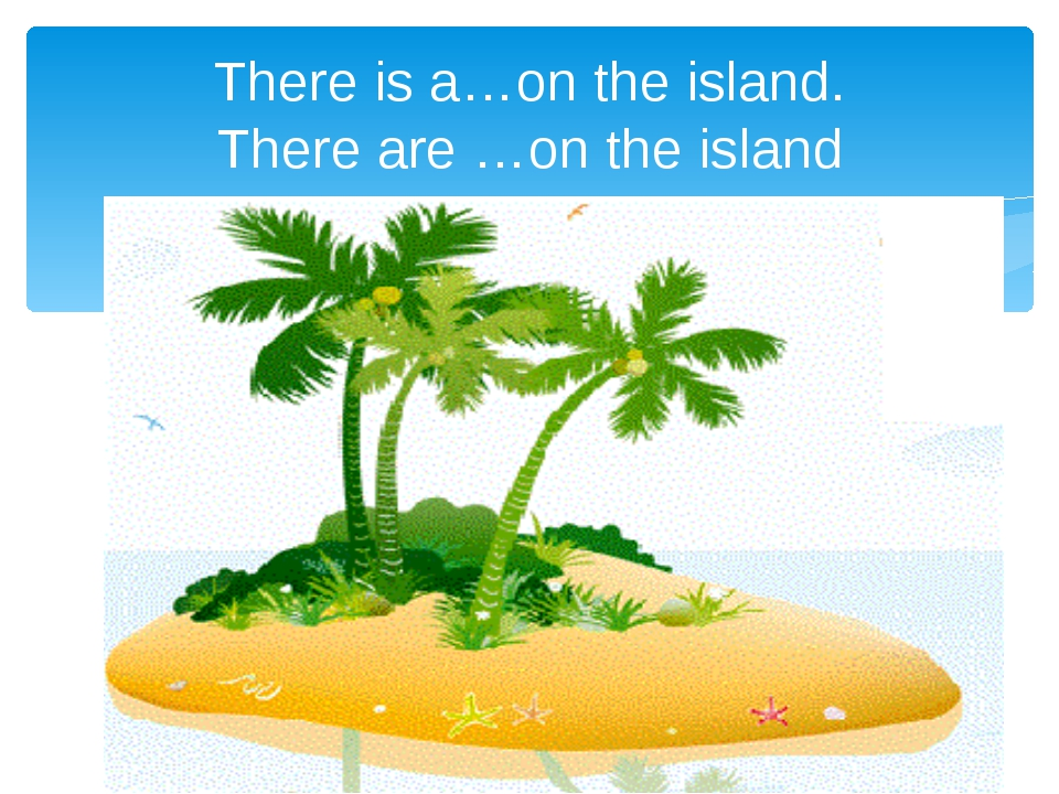There is a…on the island. There are …on the island