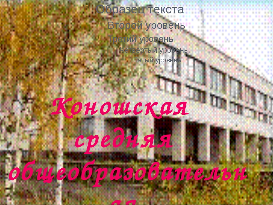 Коношская средняя общеобразовательная школа