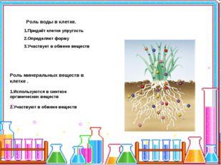 Роль воды в клетке. 1.Придаёт клетке упругость 2.Определяет форму 3.Участвуе