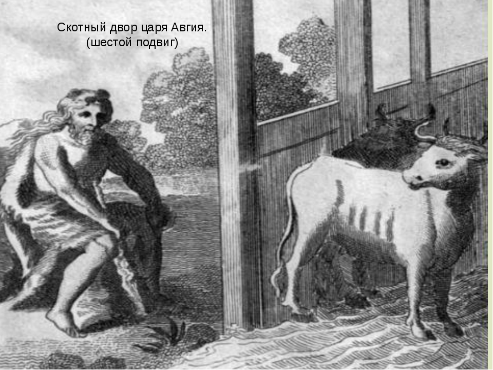 Скотный двор царя Авгия. (шестой подвиг)