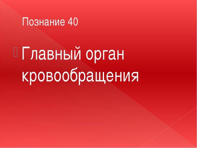 Познание 40 Главный орган кровообращения