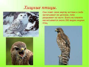 Хищные птицы. Они ловят свою жертву когтями и либо заглатывают ее целиком, ли