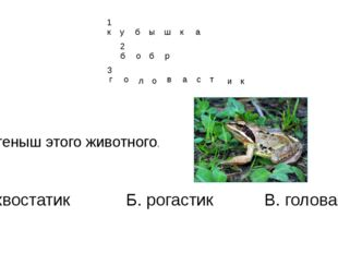3. Детеныш этого животного. А. хвостатик Б. рогастик В. головастик г о л о в