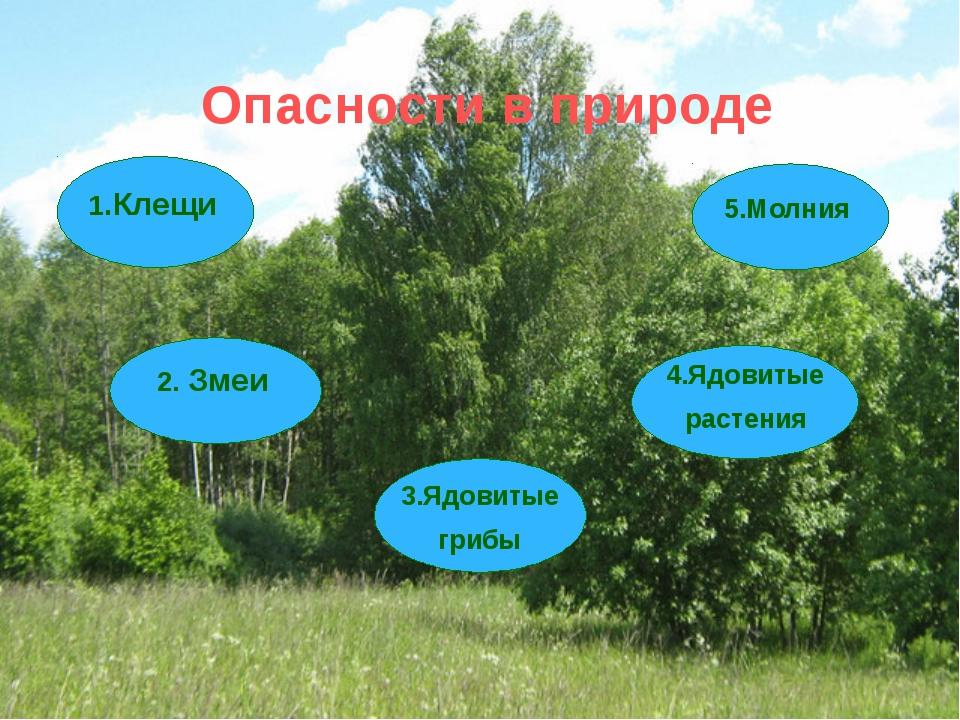 Опасности в природе 1.Клещи 2. Змеи 3.Ядовитые грибы 4.Ядовитые растения 5.М...