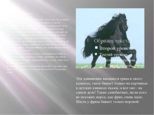 Слепая лошадь. Сказка. Давно, очень уже давно, когда не только нас, но и наш