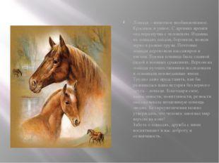 Лошадь – животное необыкновенное. Красивое и умное. С древних времён она нер