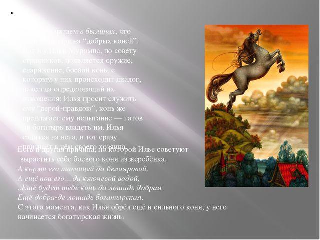 """Поэтому читаемв былинах, что сели богатыри на """"добрых коней"""". Вот и у Ильи..."""