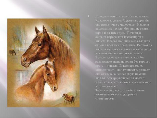 Лошадь – животное необыкновенное. Красивое и умное. С древних времён она нер...