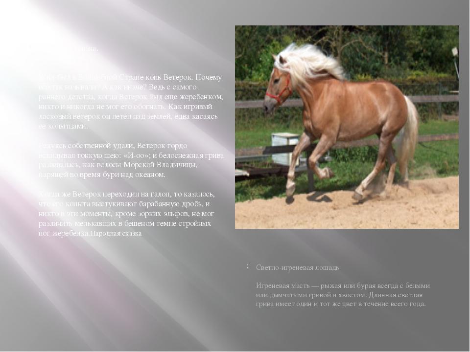 Народная сказка. Конь Ветерок Жил-был в Волшебной Стране конь Ветерок. Почем...