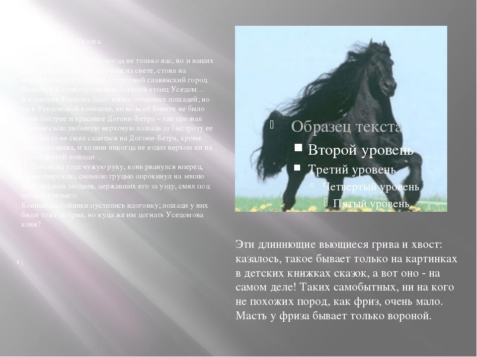 Слепая лошадь. Сказка. Давно, очень уже давно, когда не только нас, но и наш...