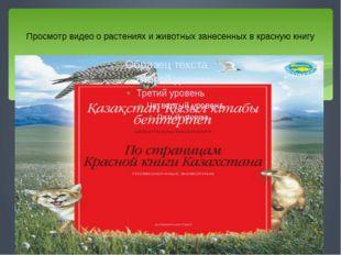 Просмотр видео о растениях и животных занесенных в красную книгу