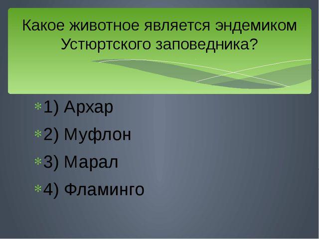 1) Архар 2) Муфлон 3) Марал 4) Фламинго Какое животное является эндемиком Уст...