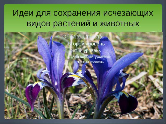 Идеи для сохранения исчезающих видов растений и животных