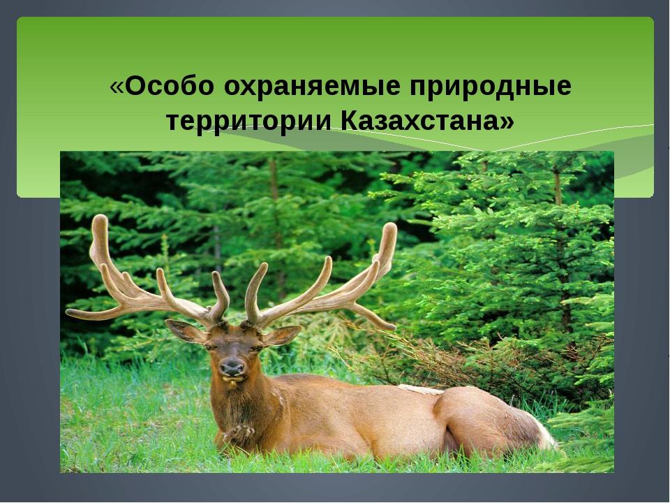 «Особо охраняемые природные территории Казахстана»