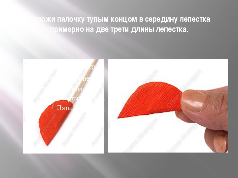 Положи палочку тупым концом в середину лепестка примерно на две трети длины л...