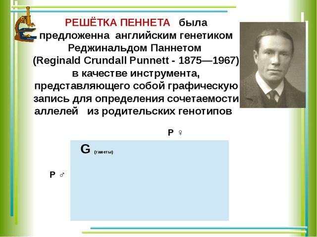 РЕШЁТКА ПЕННЕТА была предложенна английским генетиком Реджинальдом Паннетом (...