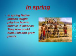In spring In spring Native Indians taught pilgrims how to survive in America.