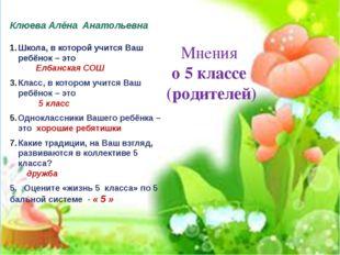 Мнения о 5 классе (родителей) Клюева Алёна Анатольевна Школа, в которой учит