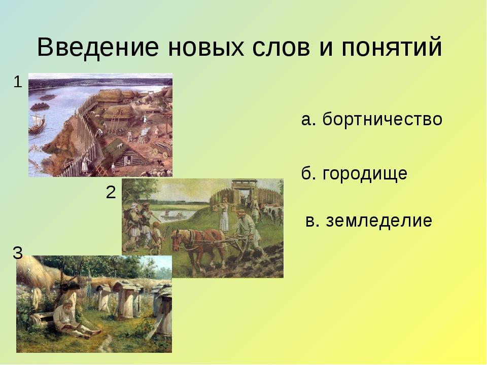 Введение новых слов и понятий б. городище 1 2 3 в. земледелие а. бортничество