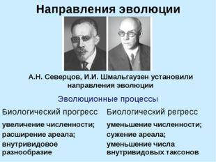 Направления эволюции А.Н. Северцов, И.И. Шмальгаузен установили направления э