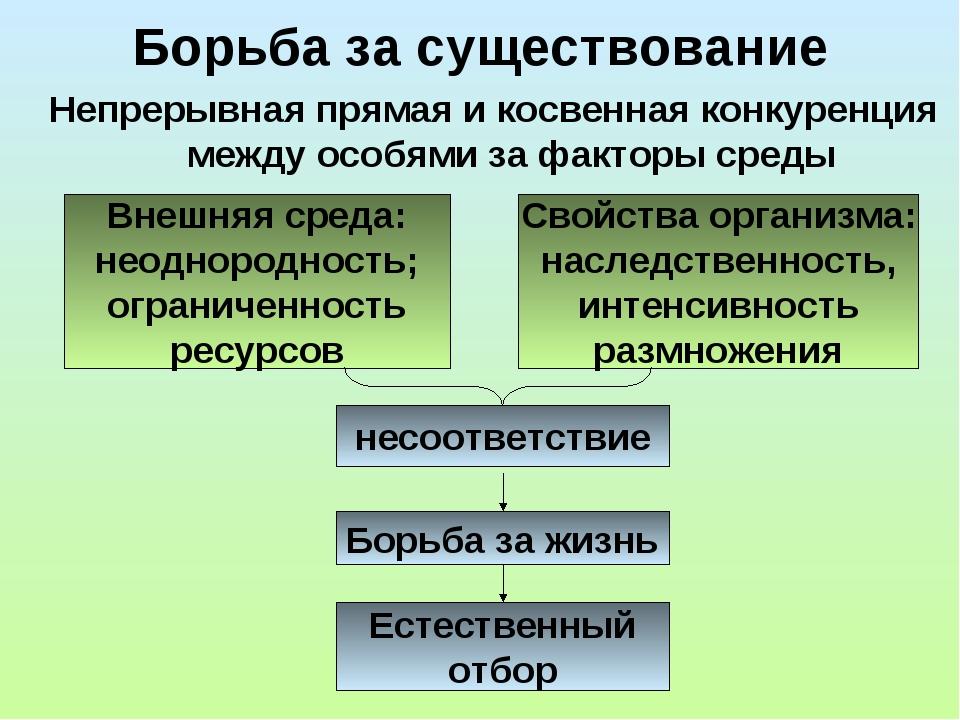 Борьба за существование Непрерывная прямая и косвенная конкуренция между особ...
