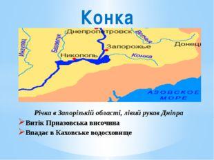 Річка в Запорізькій області, лівий рукав Дніпра Витік Приазовська височина Вп