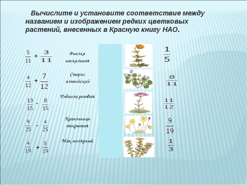 Вычислите и установите соответствие между названием и изображением редких цв...