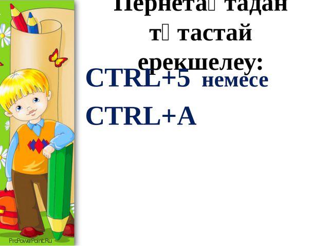 Пернетақтадан тұтастай ерекшелеу: CTRL+5 немесе CTRL+A ProPowerPoint.Ru