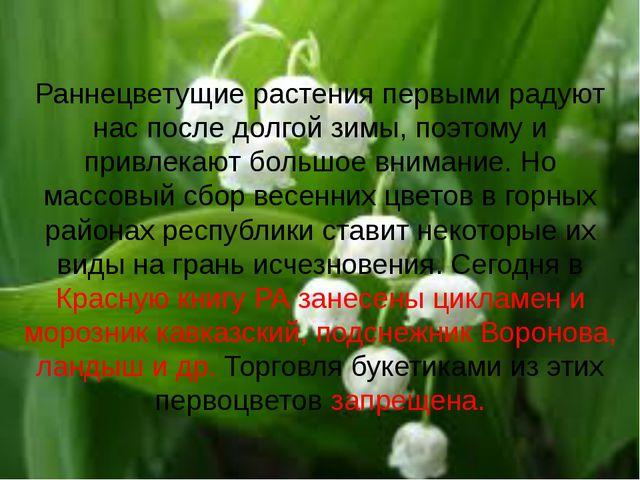 Раннецветущие растения первыми радуют нас после долгой зимы, поэтому и привле...