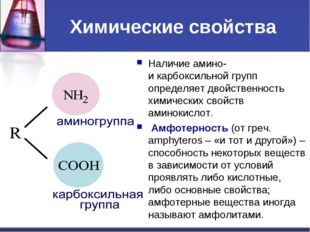 Химические свойства Наличие амино- и карбоксильной групп определяет двойствен