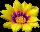 hello_html_569b5988.png