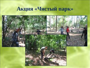 Акция «Чистый парк»