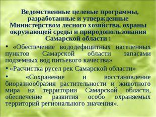 Ведомственные целевые программы, разработанные и утвержденные Министерством