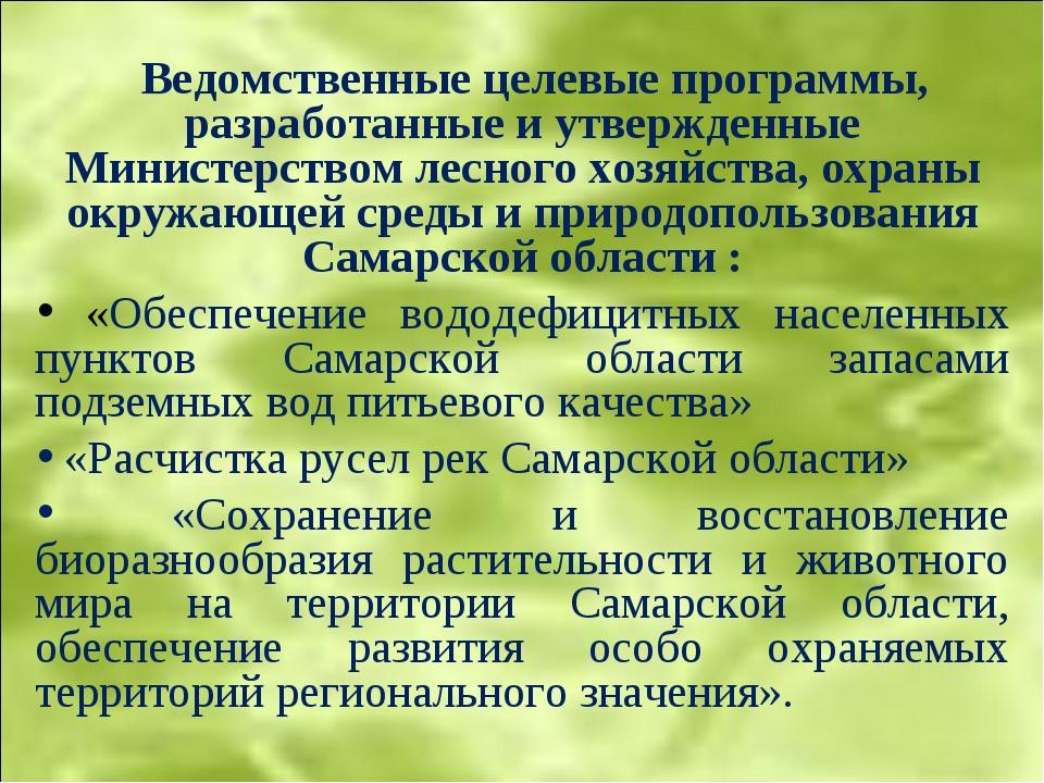 Ведомственные целевые программы, разработанные и утвержденные Министерством...