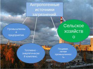 Антропогенные источники загрязнений. Промышленные предприятия. Топливно - эне