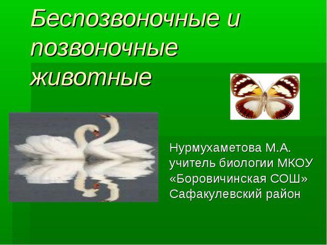 Беспозвоночные и позвоночные животные Нурмухаметова М.А. учитель биологии МКО...